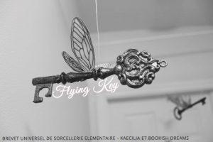 Flying Key